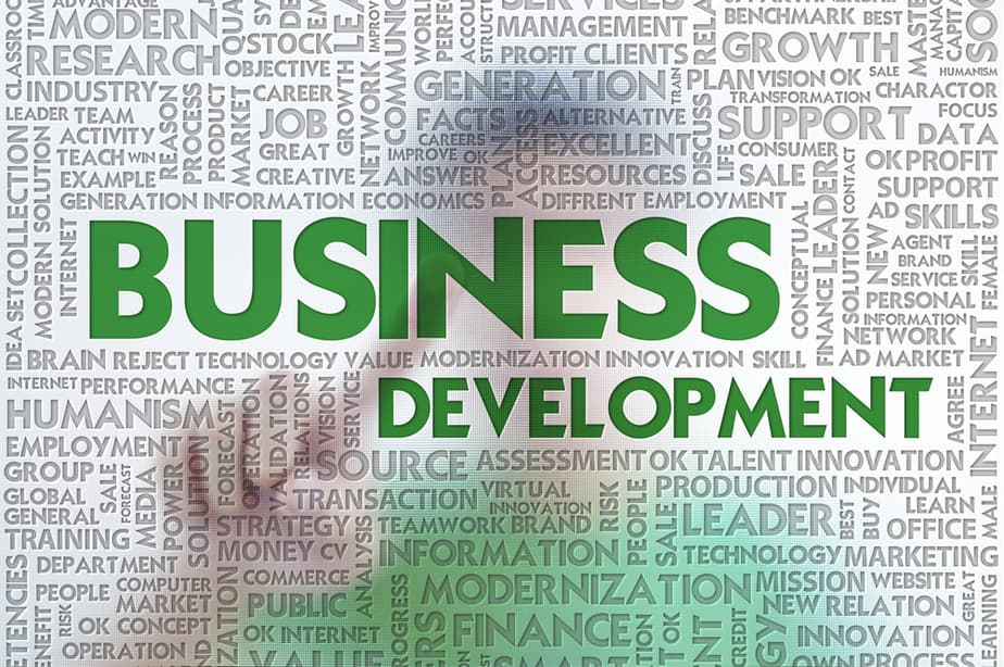 Understanding the Concept of Business Development